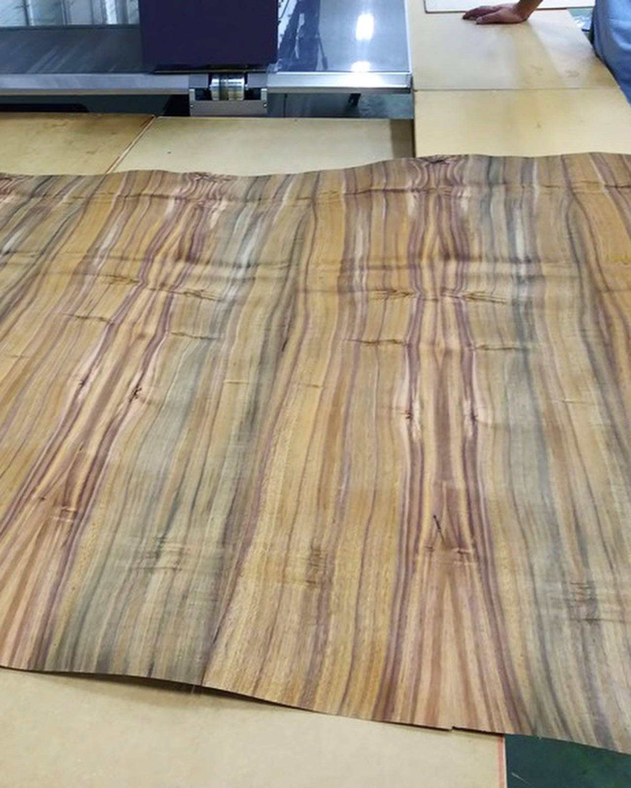 Book Matched Sheet of Koa Veneer