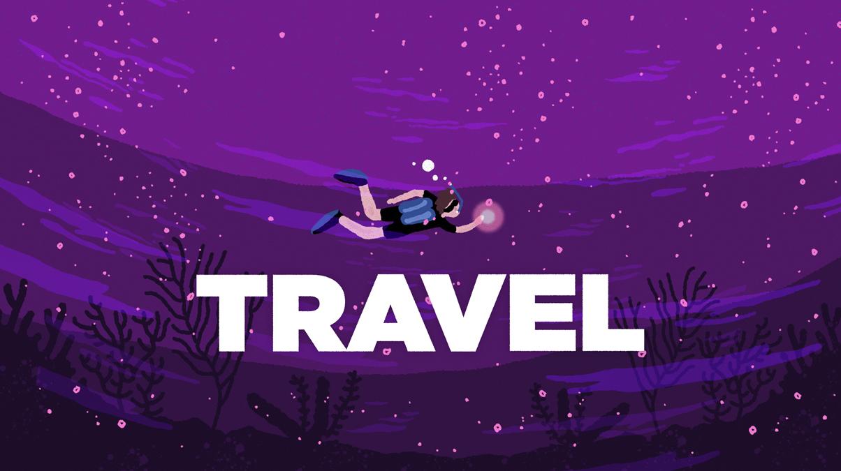 라이프쉐어 다이빙 클럽 'TRAVEL'