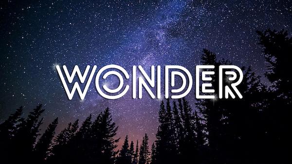 Wonder_website.jpg