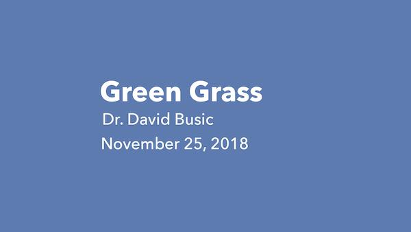 Green Grass Small.jpg
