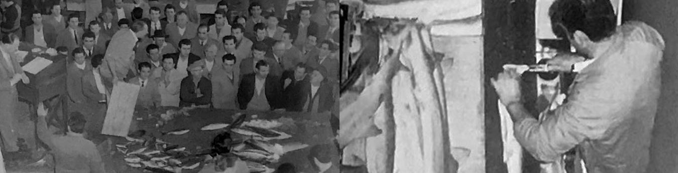 Left: the fish market auction, 1950s; Right: filleting shark, 2001.