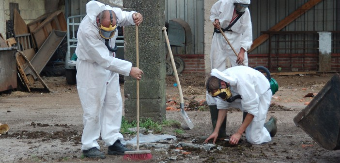 National Safety Services asbestos removal.jpg