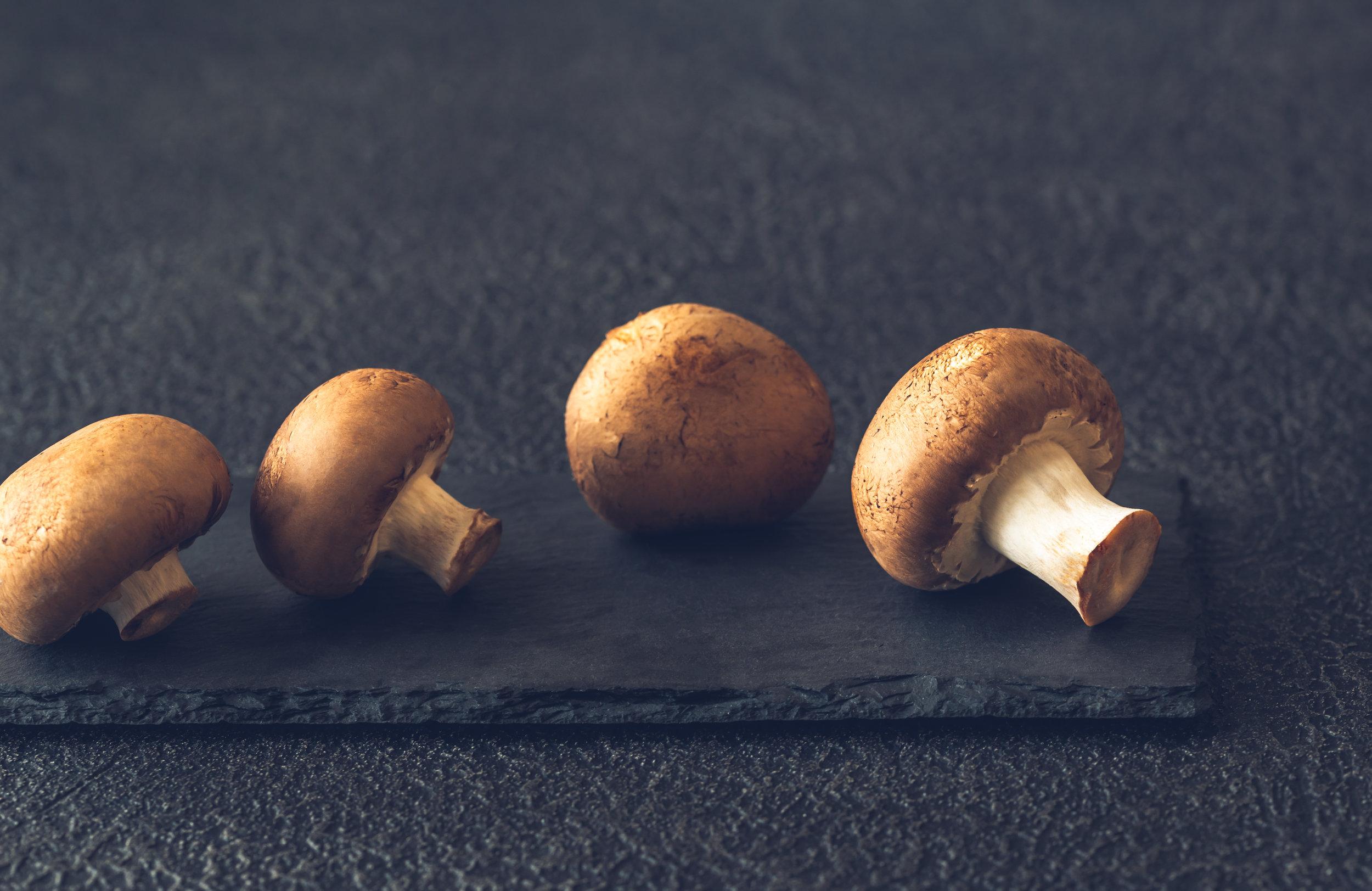 swiss-brown-mushrooms-58QR7FV.jpg