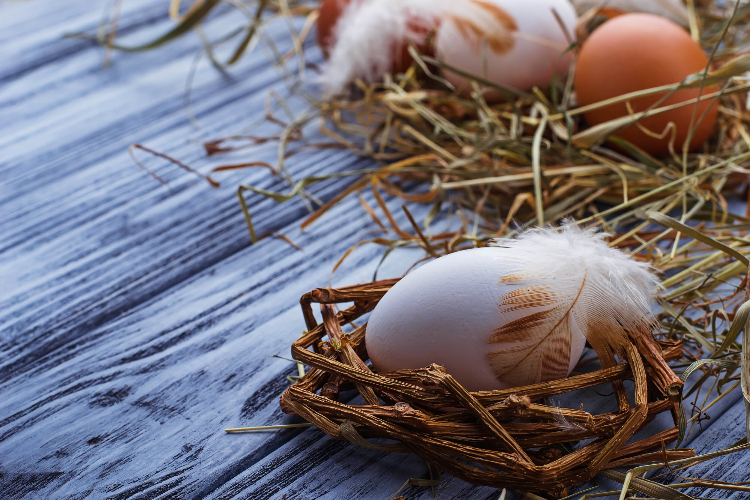 brown-and-white-eggs-on-wooden-background-647PNKS.jpg