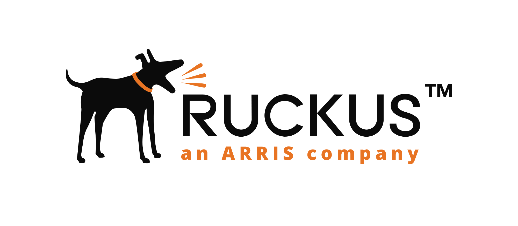 RUCKUS - Powerful, reliable, scalable, wireless from a world leader in the field.