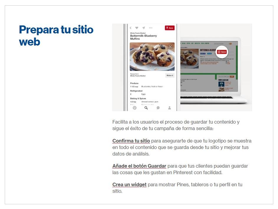 sitio web.jpg