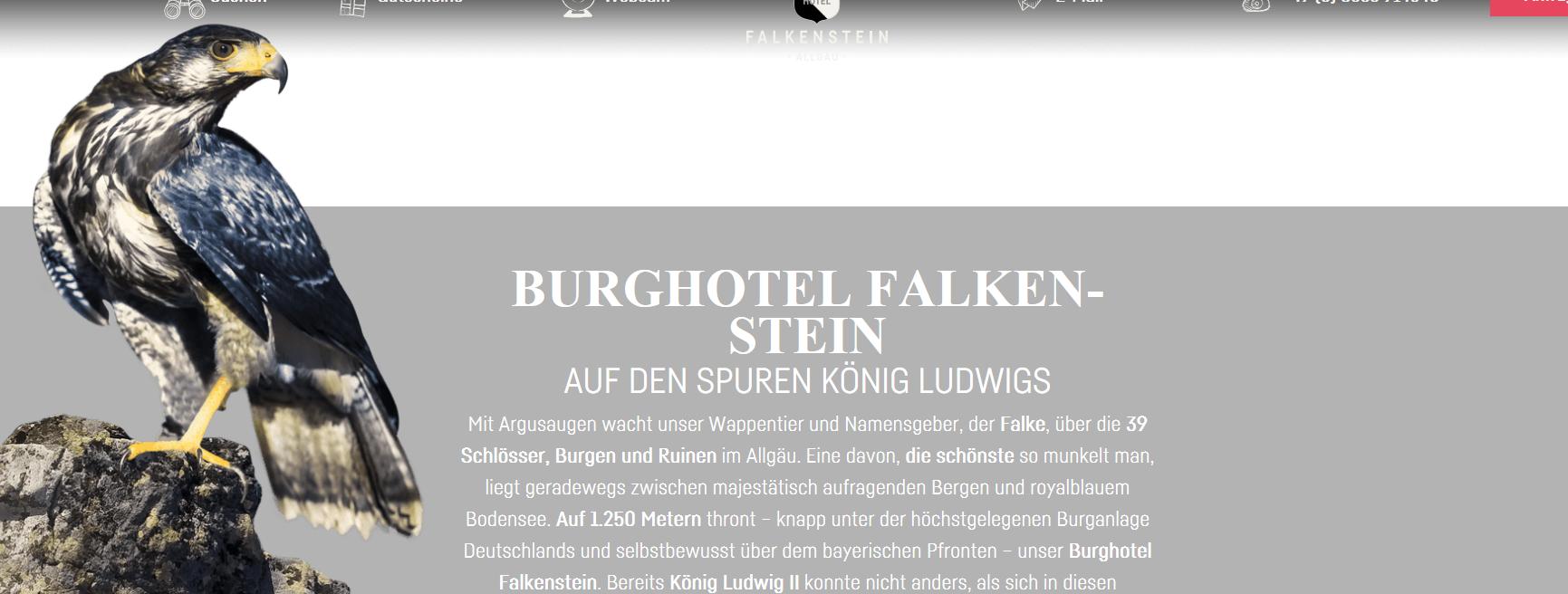 https://www.burghotel-falkenstein.de/de-DE