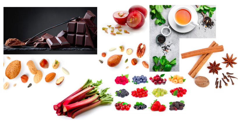 Items containing tannins. Images assembled from Adobe Stock.