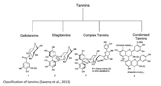 Molecular tannic structure