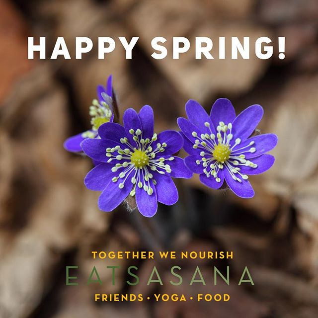 Happy Spring Equinox! 🌱The warmer light, the smell of fresh air, and the sounds of the birds is inspiring. Use this rebirth time 🐣🐥 to reflect upon your winter hibernation so you can make way for change and new invitations. 🌷 . . .  Speaking of invitations...Planning a spring event or gathering? Ask EatsAsana to support your next Spring or Summer event with food and yoga! Check us out via our link or send us an email at eatsasana@gmail.com. . . . #eatsasana #foodyogafriends #rocyoga #rocfoodie #togetherwenourish #rochesterny
