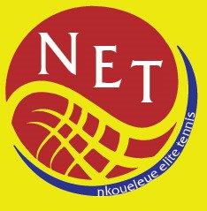 NETlogo.jpg