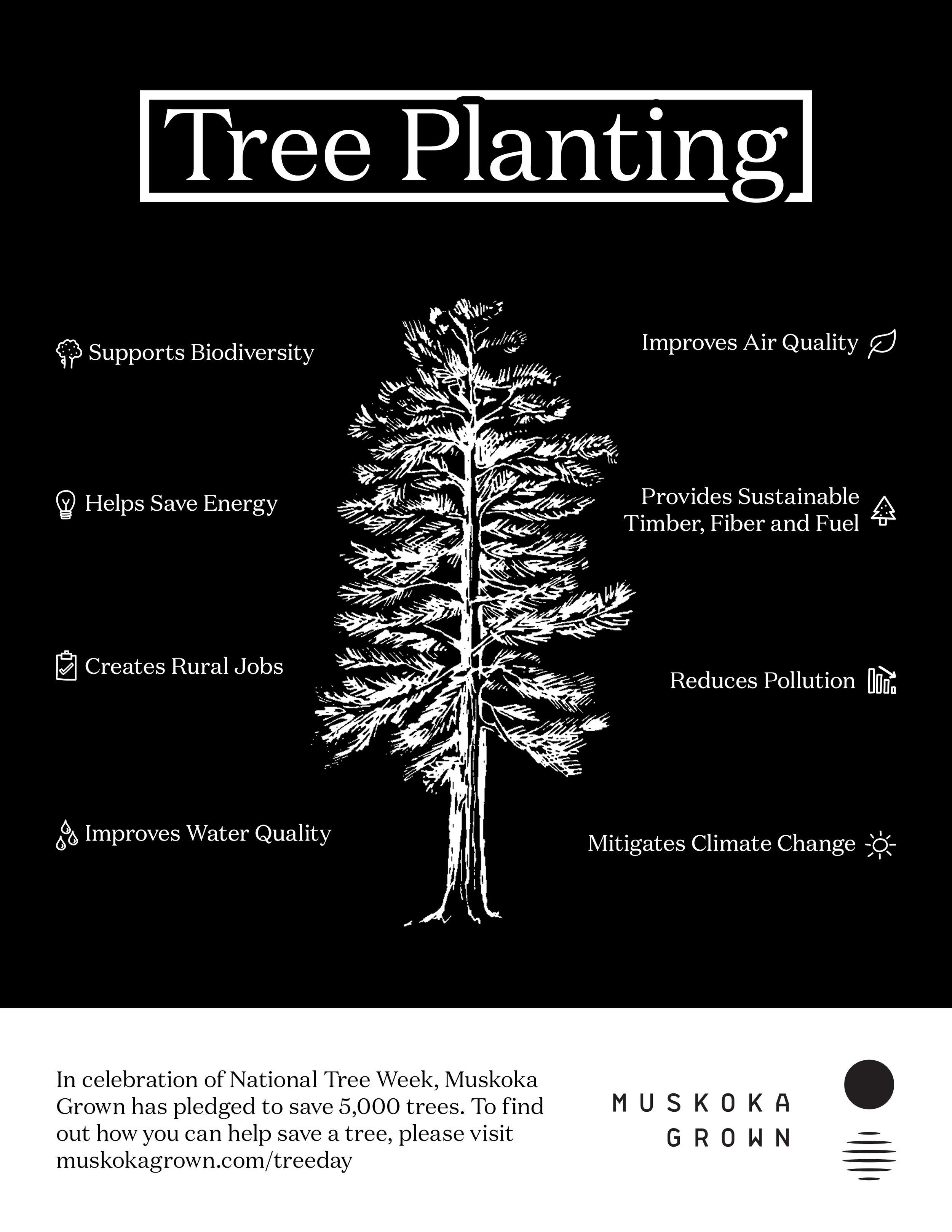 Tree Infographic.jpg