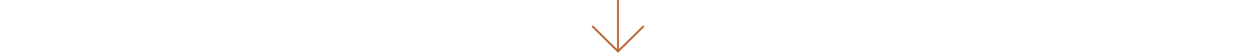BO_intro_arrow.jpg