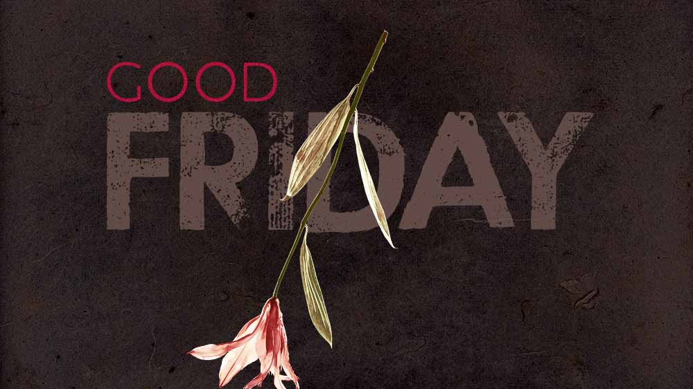 A dark grungy background with a lily flower falling to the earth. the text. 'Good Friday' is superimposed