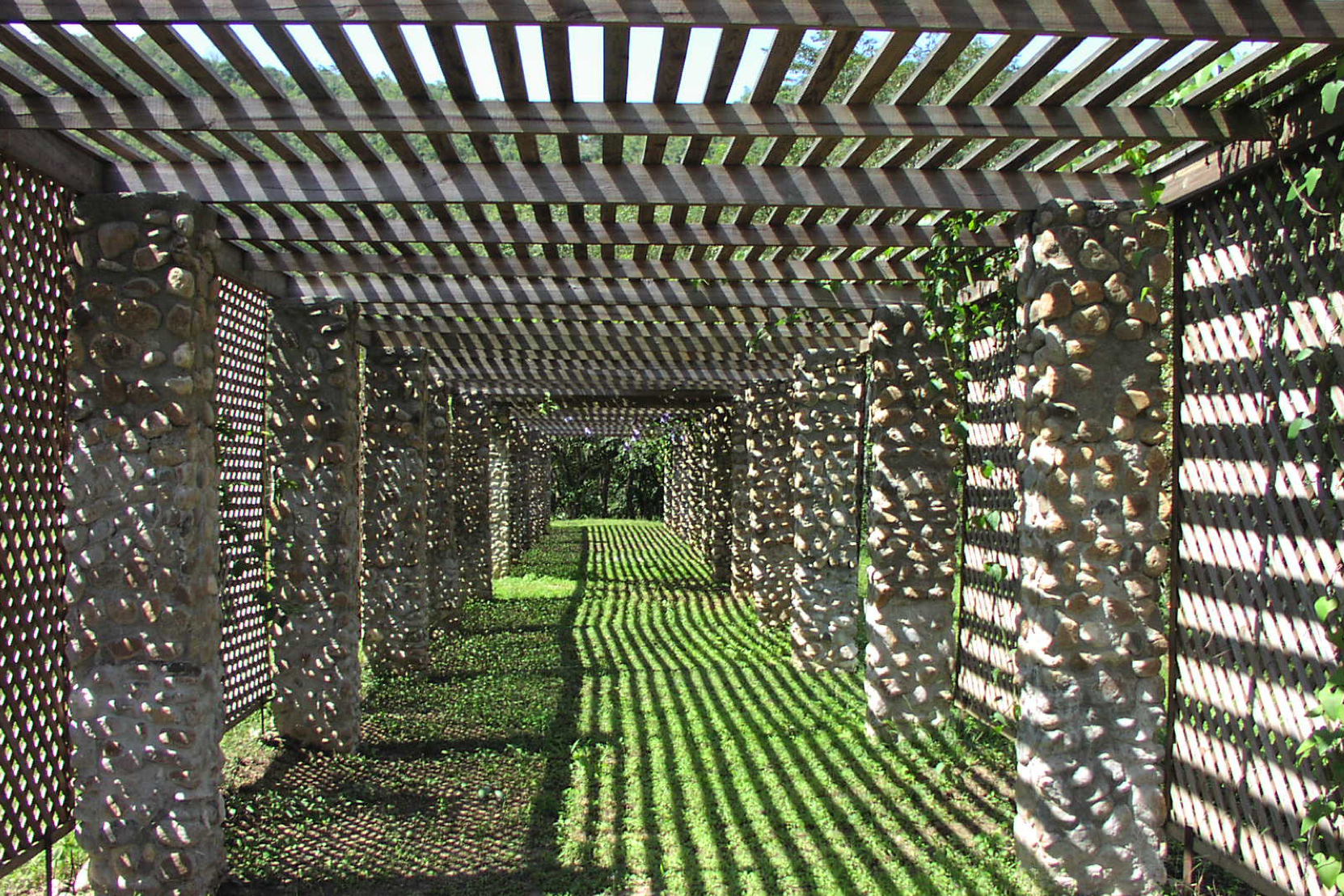 Vine Pergola - A beautiful place to relax during a walk through the gardens, or the perfect event venue.
