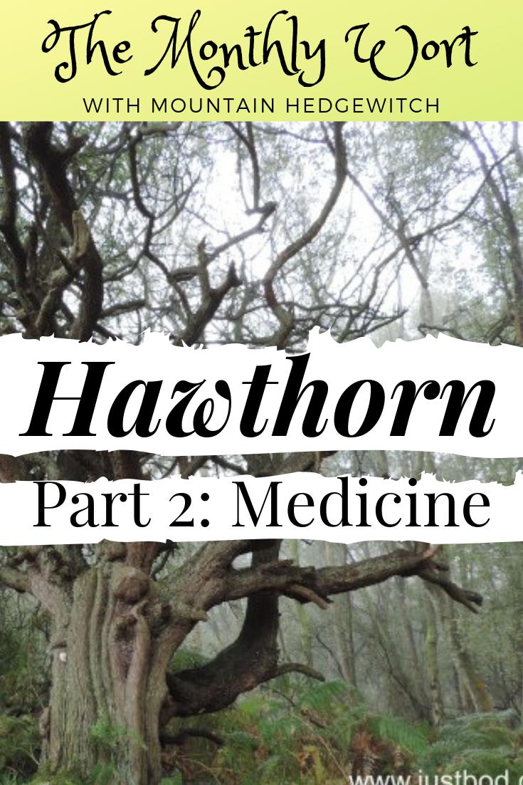 MW Hawthorn Pin 2.png