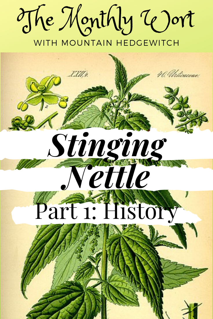 MW Nettle Pin 1.png