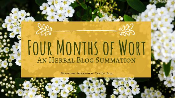 Four Months of Wort Blog Header.png