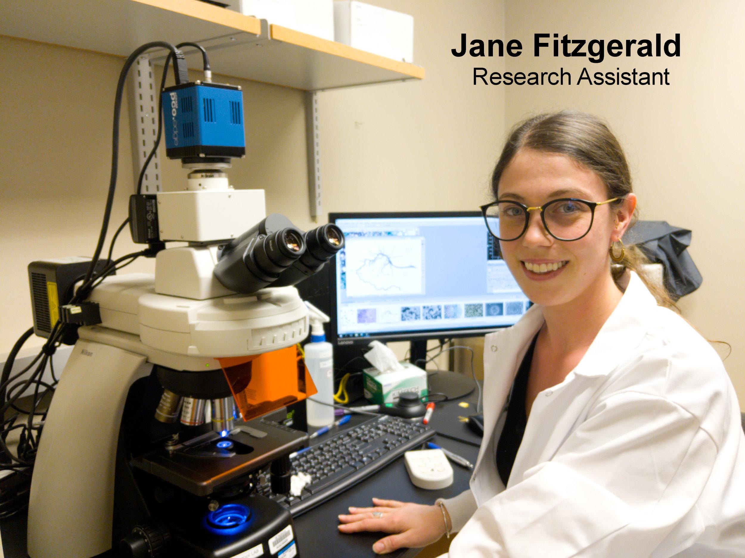 Jane Fitzgerald -