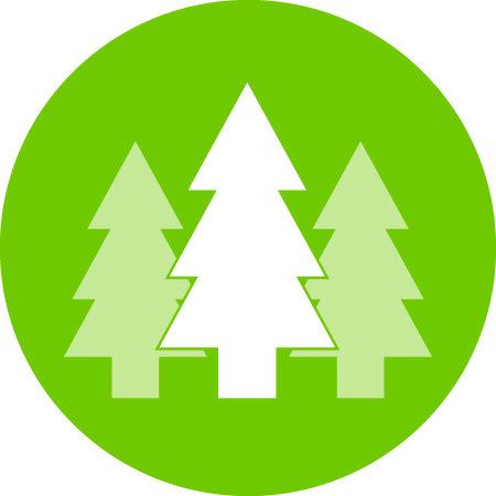 TCF - Working Forest Fund (1).jpg