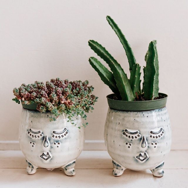 "We all love our plants. Right?!?!? Finding the perfect plant pot sometimes takes forever. Our plants have personality. So how about our pots? I love these Mr and Mrs pots for so many reasons. Hand crafted, they are a perfect size for a 2"", 3"" and even a 4"" plant.  Scroll through to see Mr and Mr. Mrs and Mrs. DM if you are interested in purchasing a pot or 2. ⠀⠀⠀⠀⠀⠀⠀⠀⠀ ⠀⠀⠀⠀⠀⠀⠀⠀⠀ #fleurtseattle #apartmenttherapy #jungalow #sodomino #houseplantclub #houseplantsofinstagram #plantsofinstagram #indoorjungle #plantsmakepeoplehappy #plantsinseattle #sunsetmagazine"
