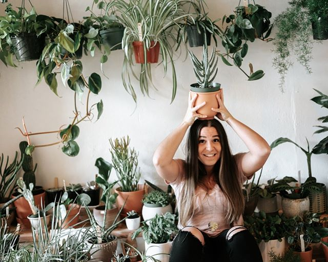 Just in time for the weekend, our Pop Up shop in Seattle is bursting with new plants. Stop by Saturday or Sunday 11-5. @fleurtseattle. ⠀⠀⠀⠀⠀⠀⠀⠀⠀ ⠀⠀⠀⠀⠀⠀⠀⠀⠀ ⠀⠀⠀⠀⠀⠀⠀⠀⠀ #pilitheplanttruck @fleurtseattle #apartmenttherapy #jungalow #sodomino #houseplantclub #houseplantsofinstagram #plantsofinstagram #indoorjungle #plantsmakepeoplehappy #plantsinseattle #sunsetmagazine #