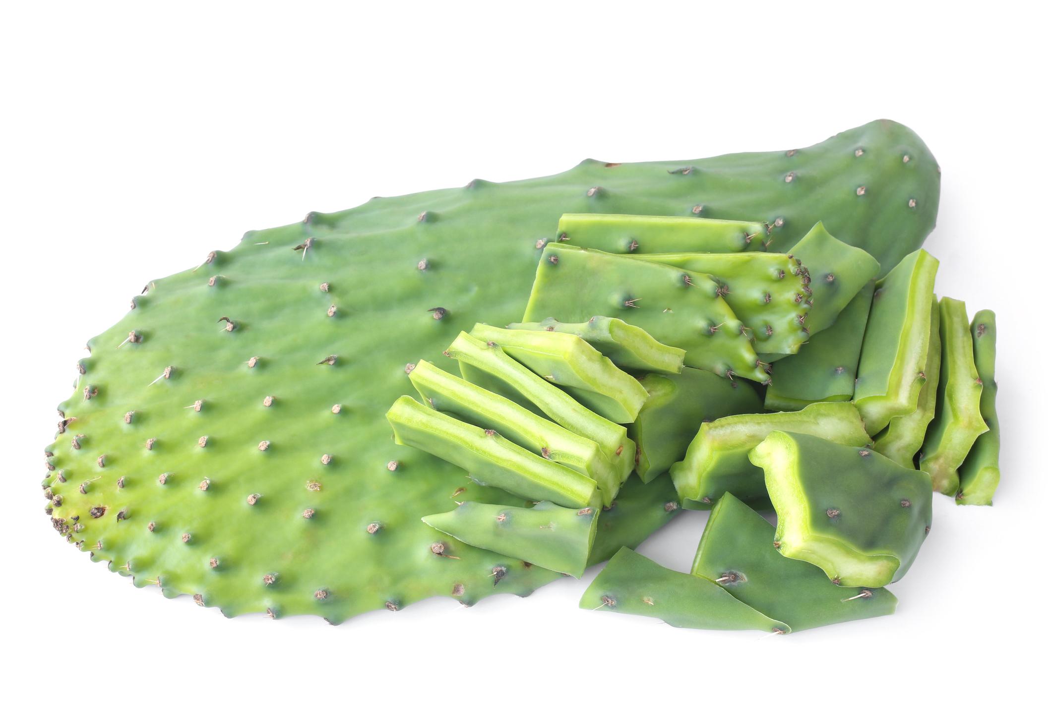 Cactus Leaves/Nopales