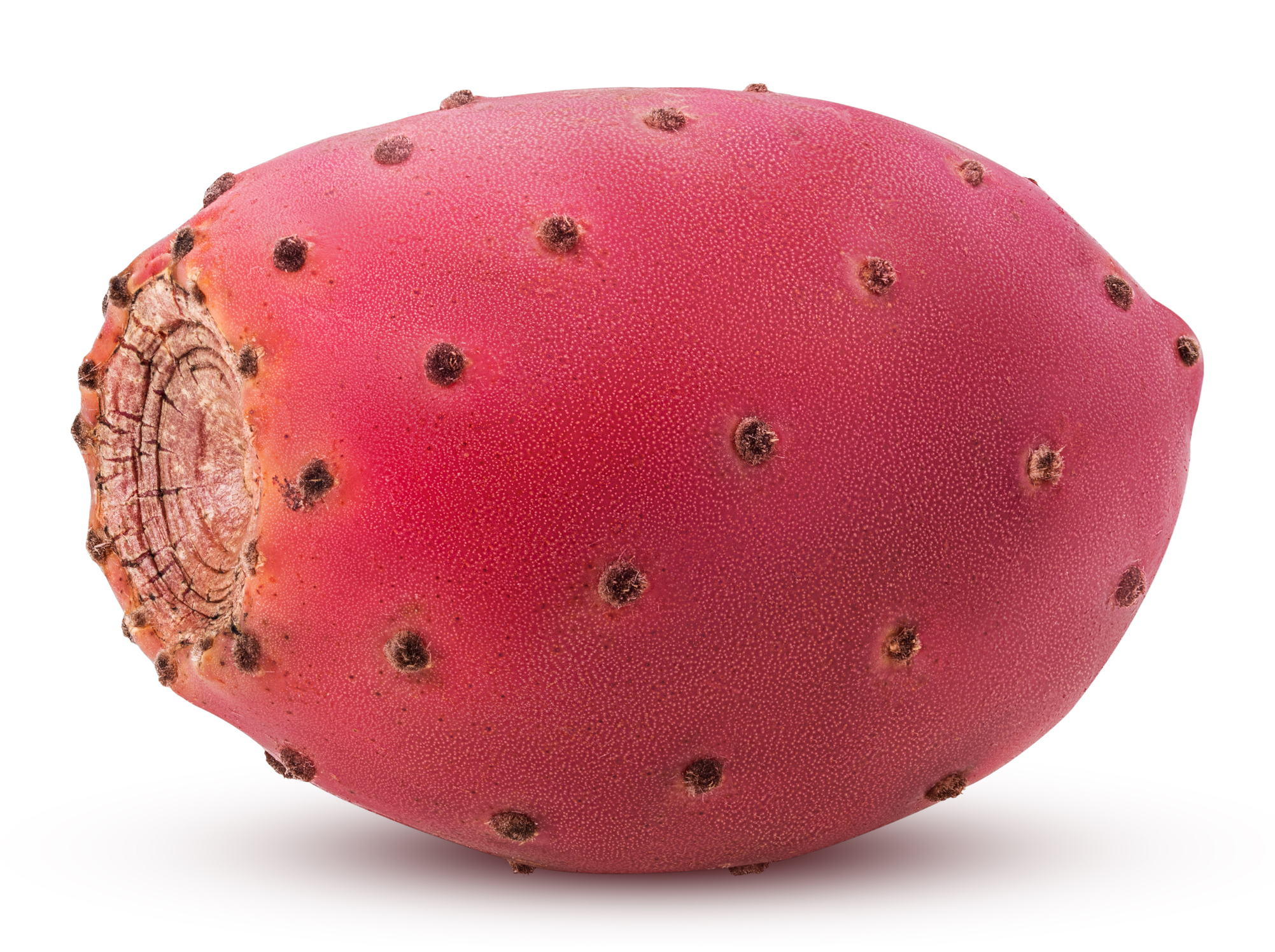 Red Cactus Pears