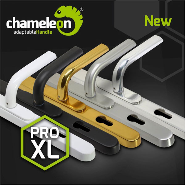 Chameleon-image-web-LR.jpg