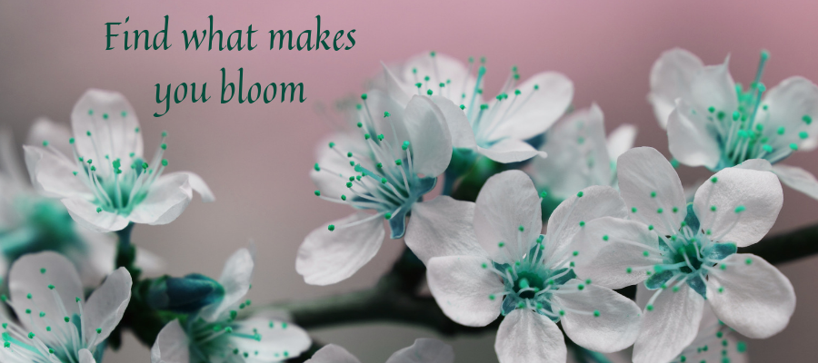 Find what makes you bloom.png