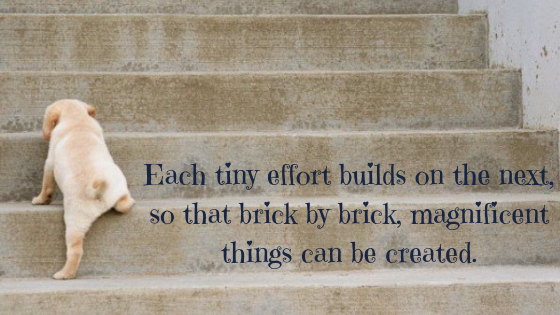 Each tiny effort builds on the next, so that brick by brick, magnificent things can be created.-2.png