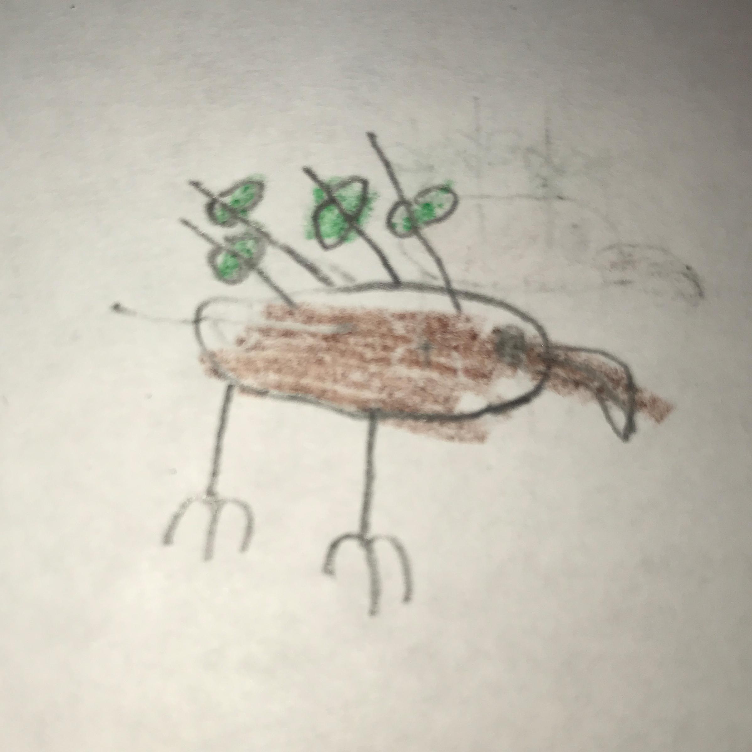 leafwing.jpg