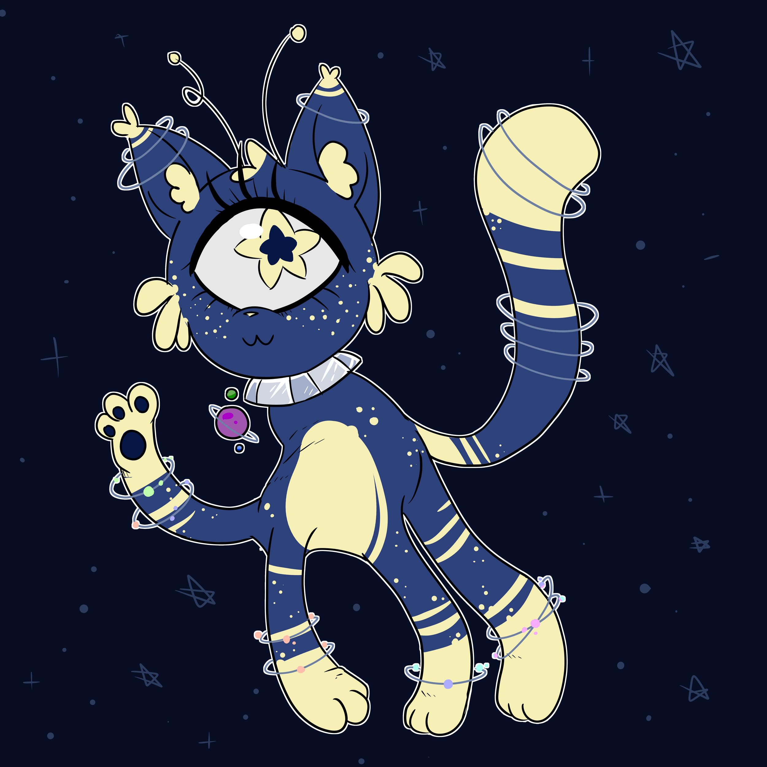 Space+Catdet.png