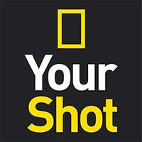 your-shot.jpg