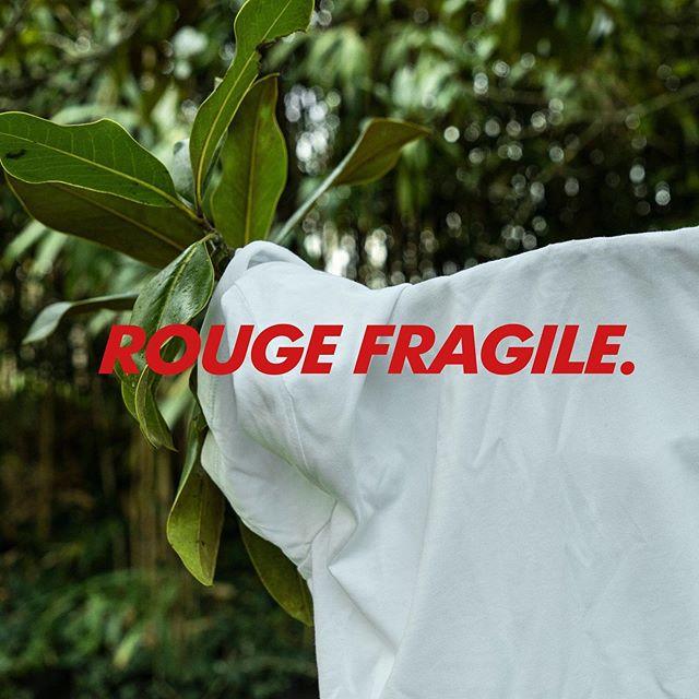 Même dans la jungle on est là (Surtout là en fait !) 🐊 🐢 🐝⠀ Ceci est une photo prise dans un jardin en Dordogne ;) ! ⠀ 📸@kathialala⠀ #rougefragile #solidarité #tshirts #minou #love #respect #amour #girlpower #flower #flowerpower