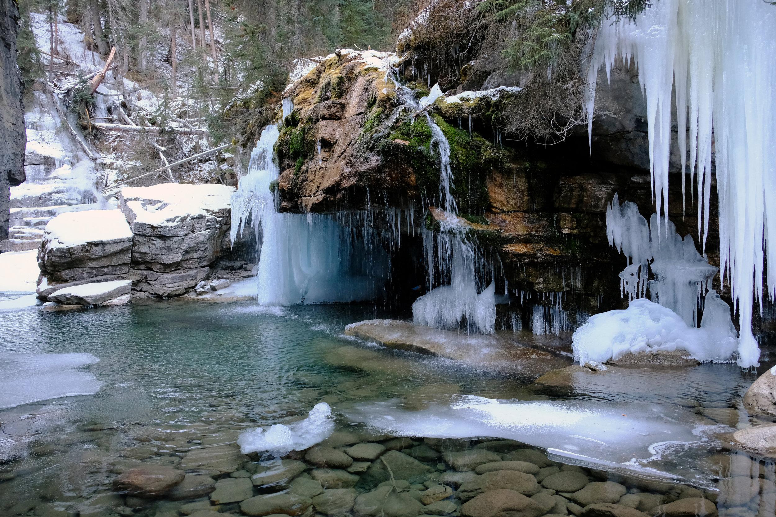 The Grotto - Early Season