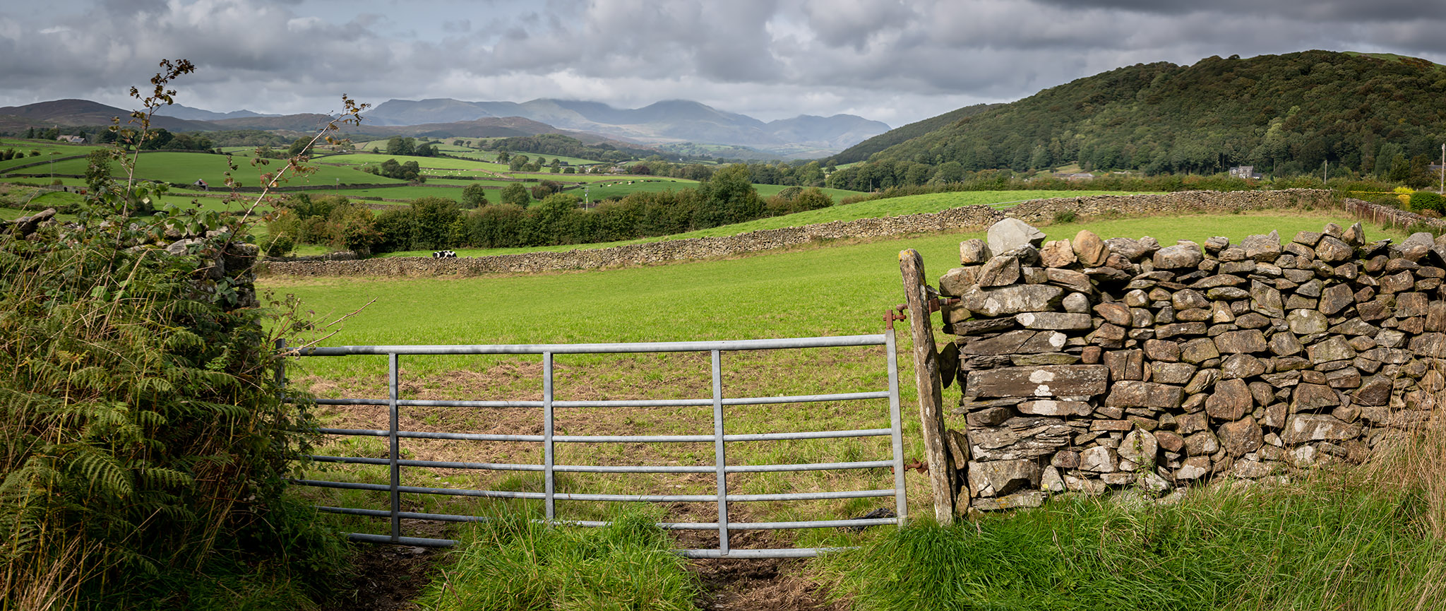 Sunday:  The Crake Valley from Lowick Green