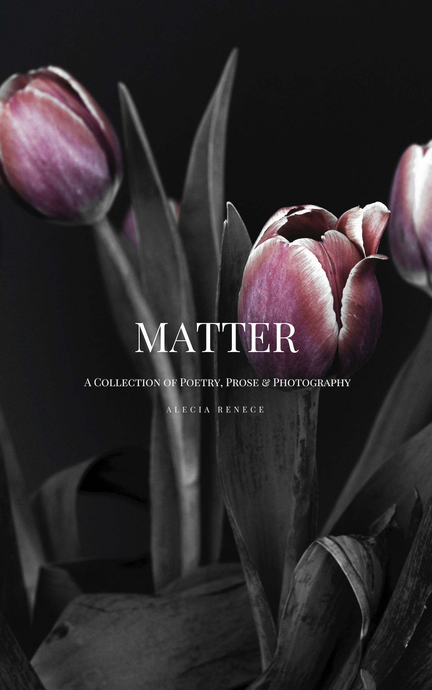 e-book matter 4.jpg