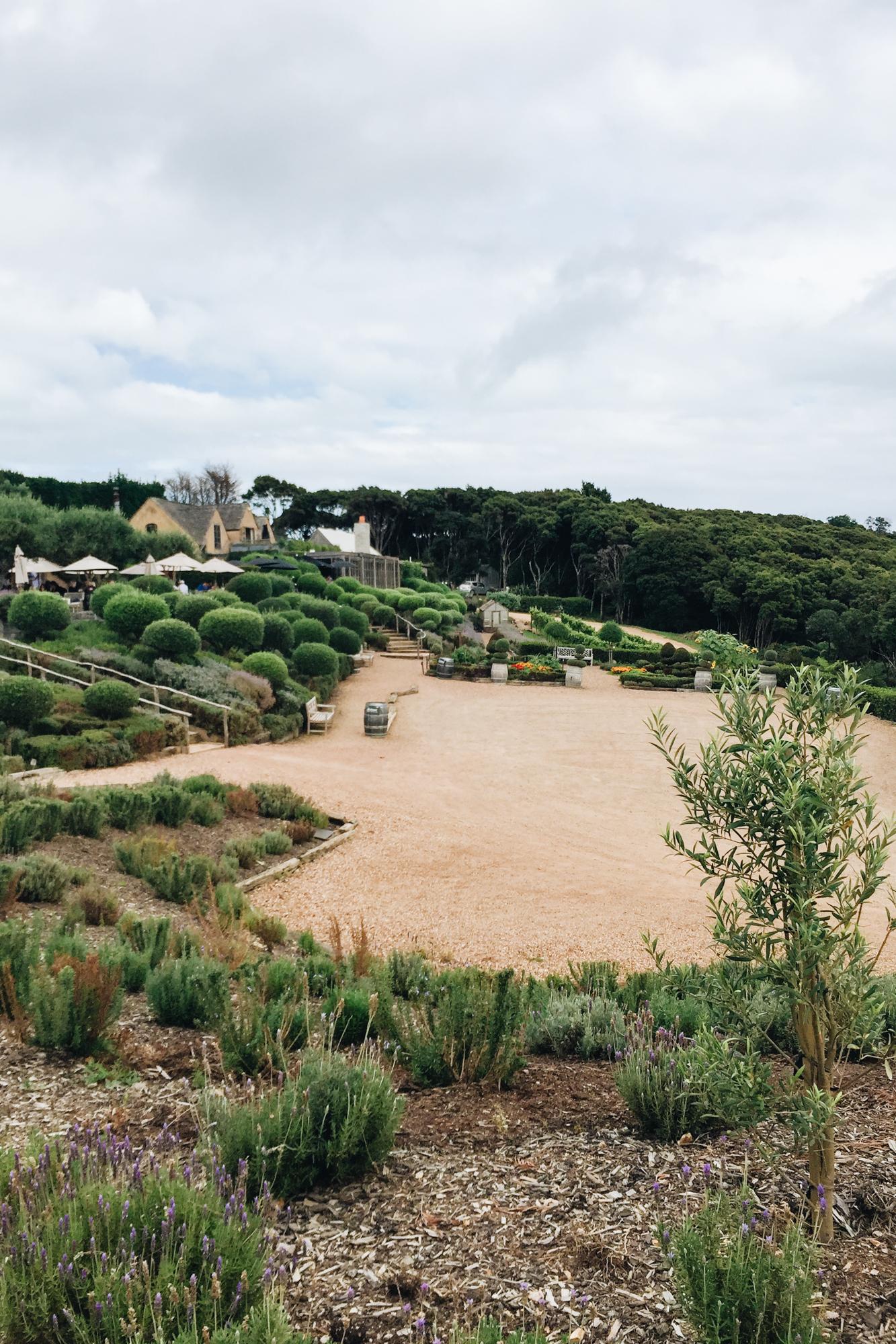 what to do in waiheke island, new zealand