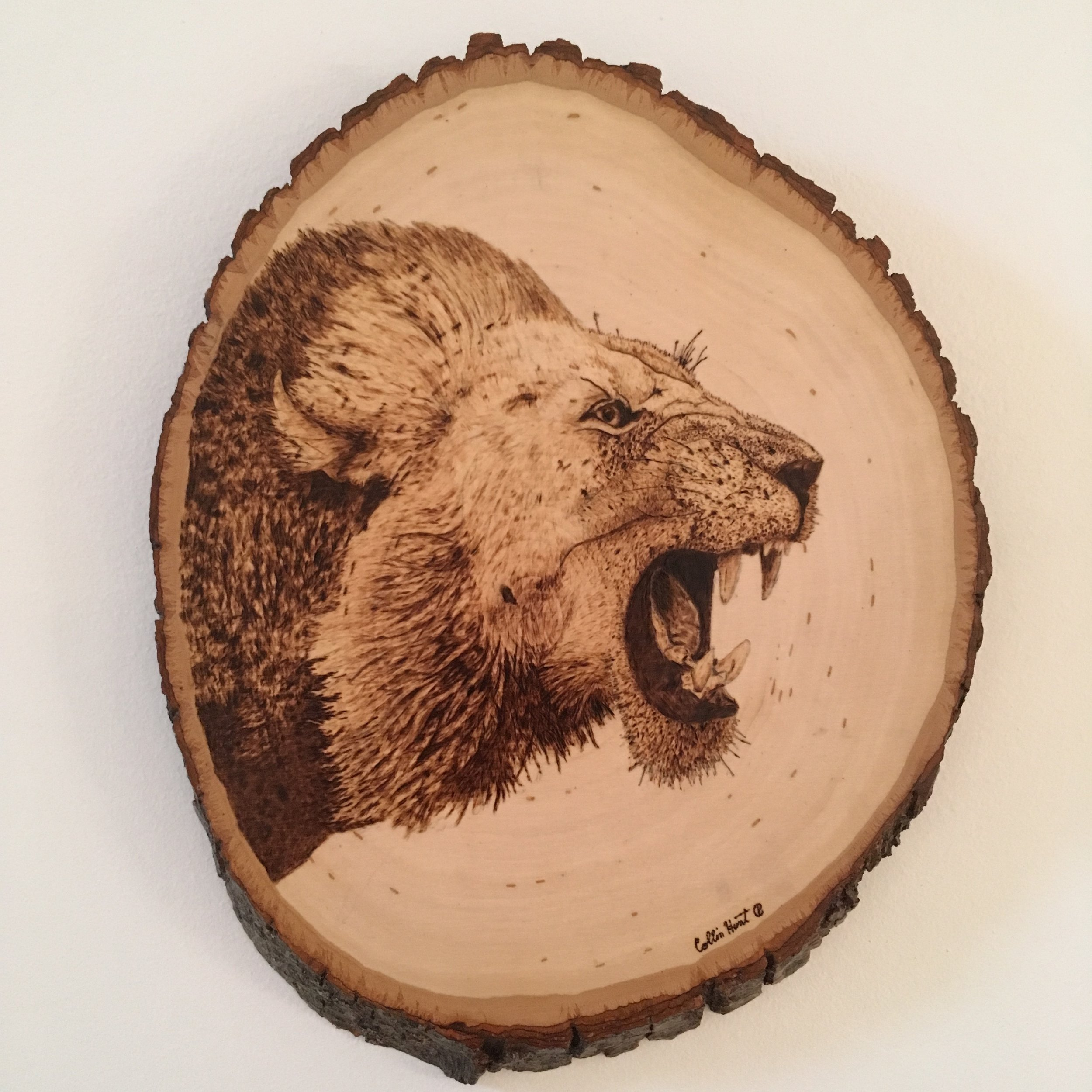 Created in the summer of 2018, this piece is wood burned on a round basswood.