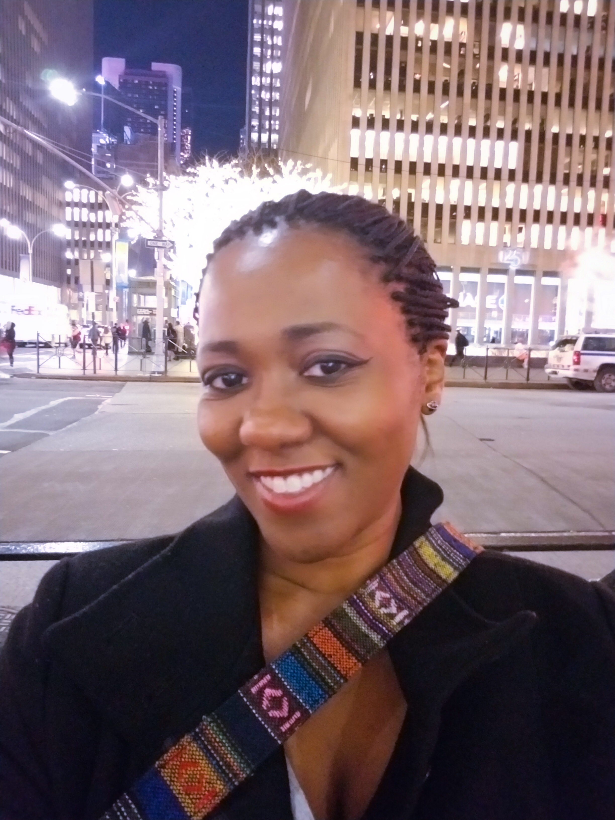 - We ventured into numerous shopping centers and daylight dissolved. We were by the Theater District and still like little squirrels, ventured out some more. We ended up at Central Park, at the dark, enjoying the scenery, shopping and breathing the New York air.We ended our evening with drinks at the Plaza. We had our first Manhattan. It seemed fitting. Sorry, I don't remember the taste. It was alcohol. I had to leave early for my flight to Cali early the next morning so I left the partying to the guys while I went to bed like a responsible adult.All-in-all, New York was beautiful for the short time I visited. I plan on going back and investing more time in the MOMA. Had I known, I would have allowed more time in New York but my goal was to experience all parts of California into my limited vacation time. Until then….