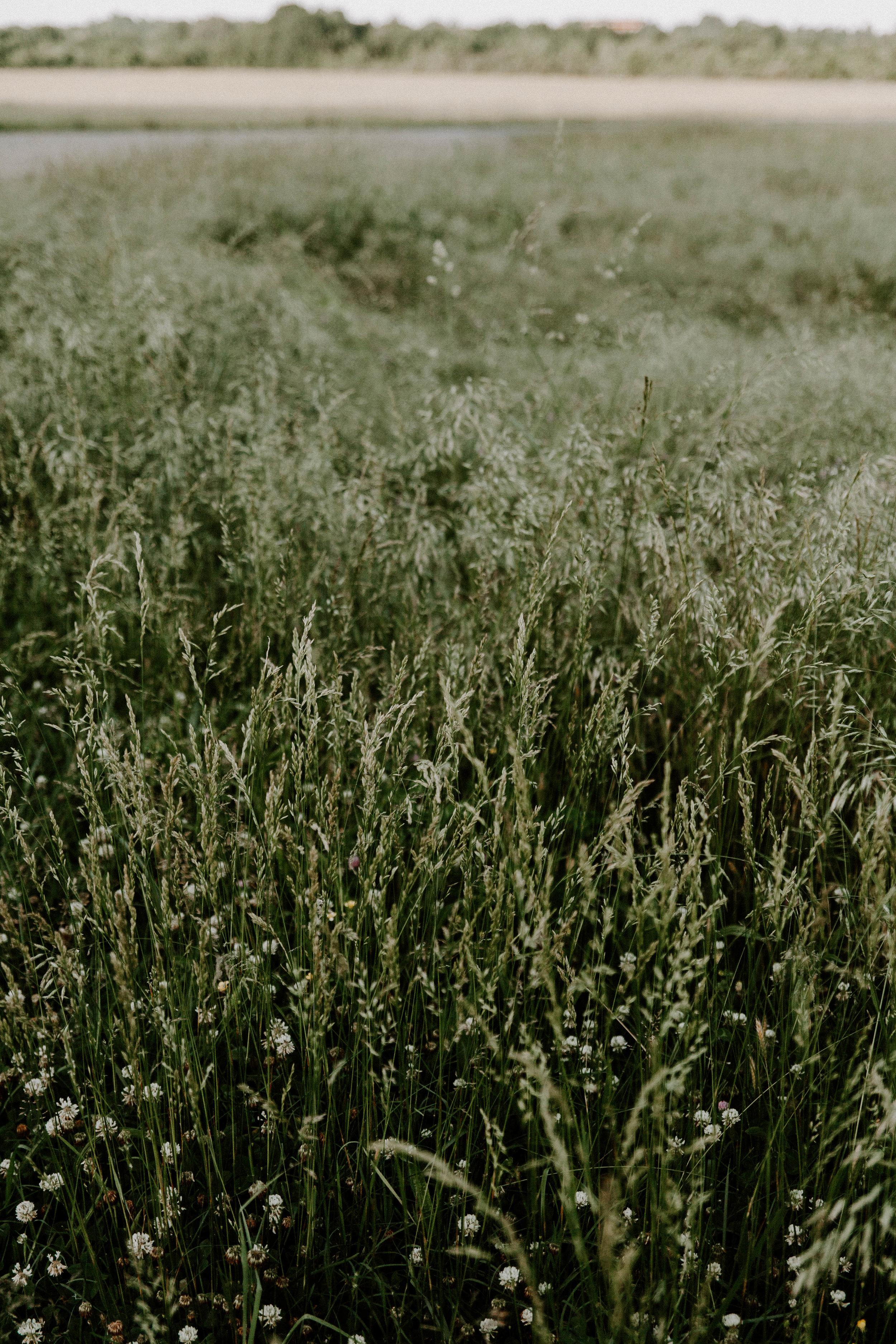 May-Melton-24.jpg