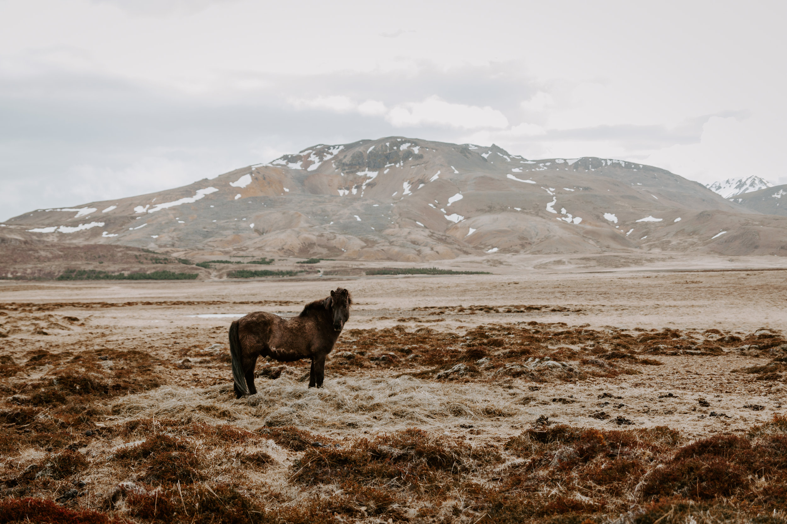Iceland-honeymoon-4039.jpg