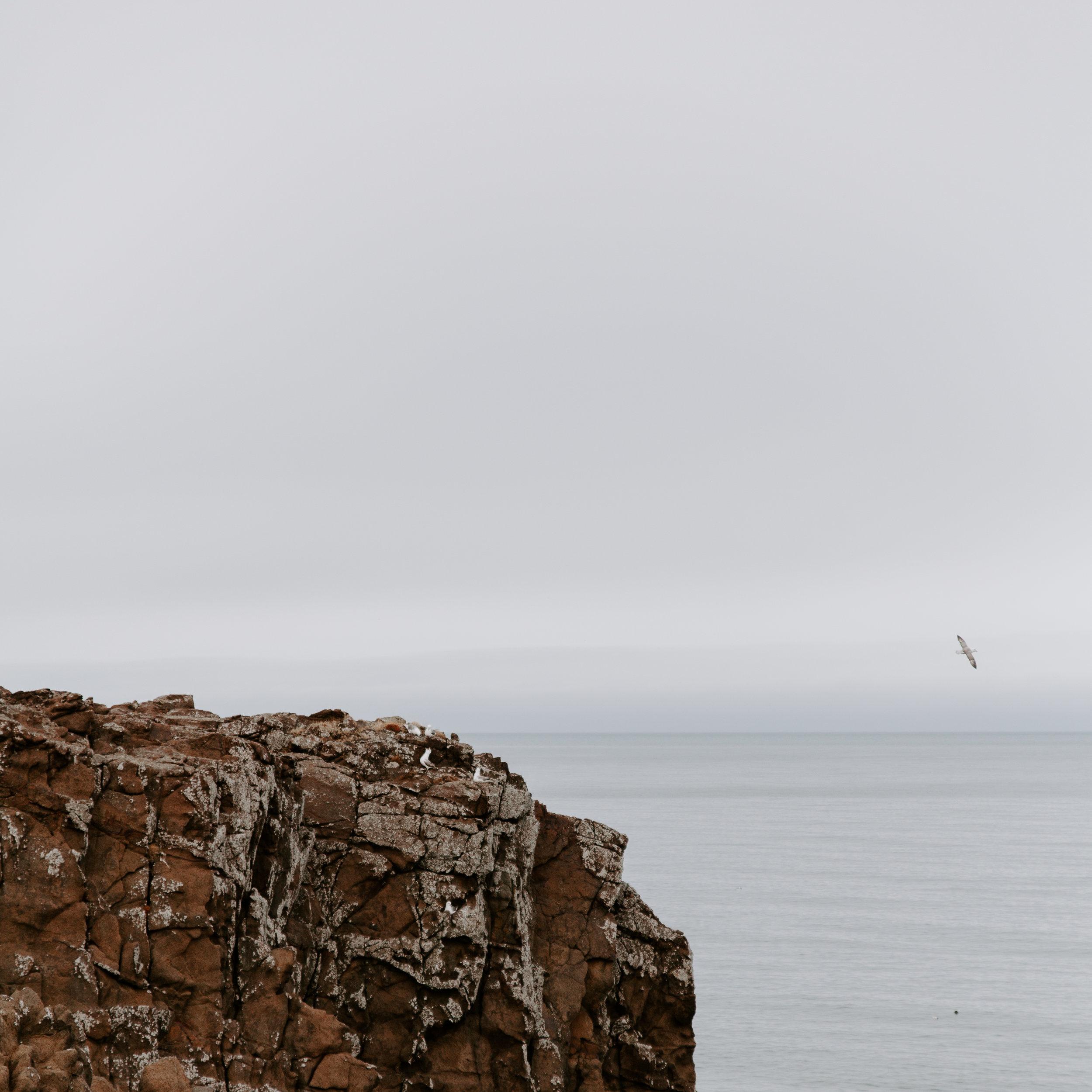 Iceland-honeymoon-4212.jpg