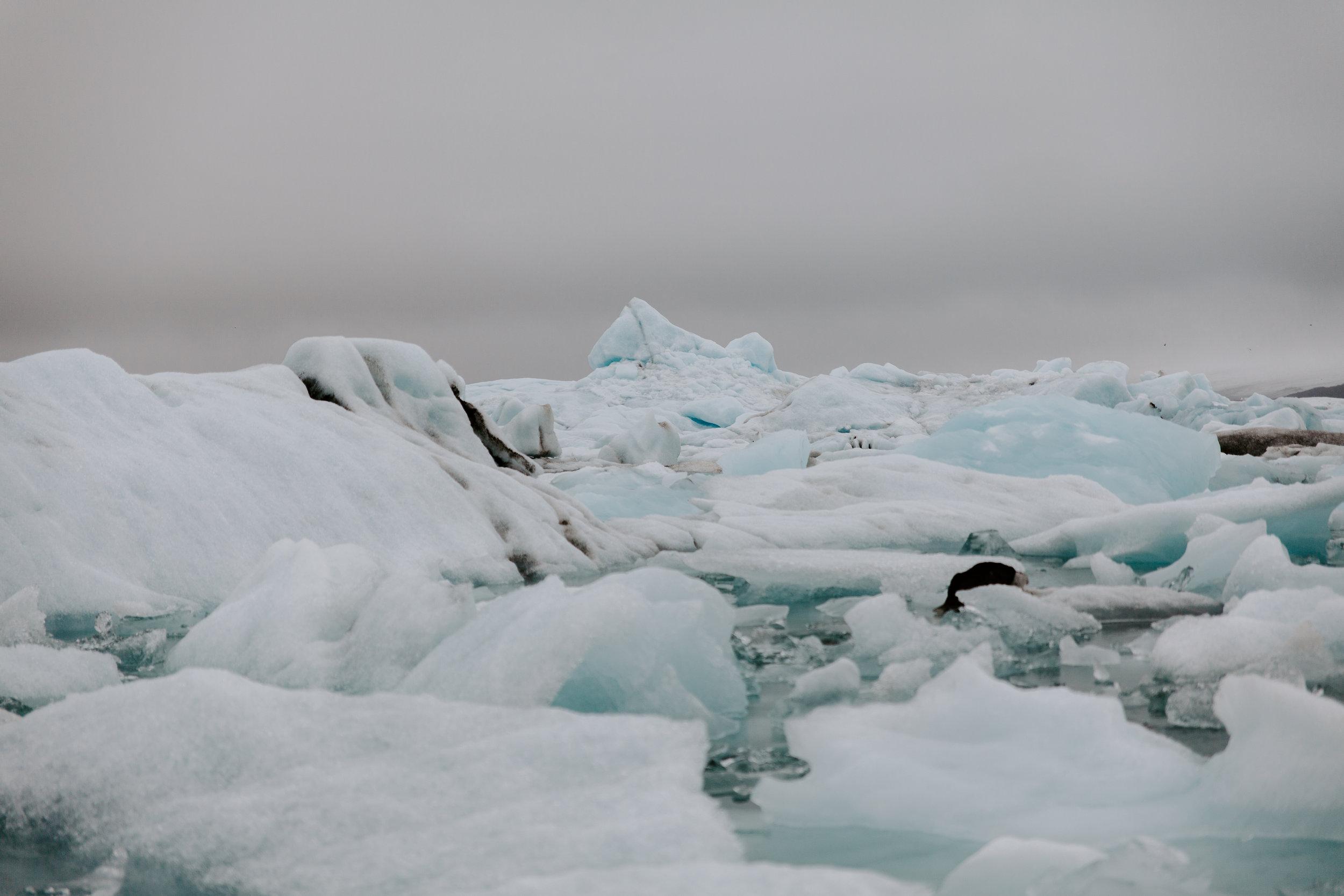 Iceland-honeymoon-4461.jpg