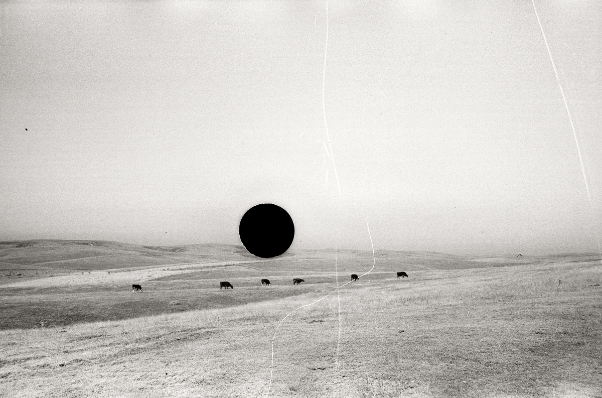 7. Untitled. Nebraska. 1938. John Vachon. 8a04038.