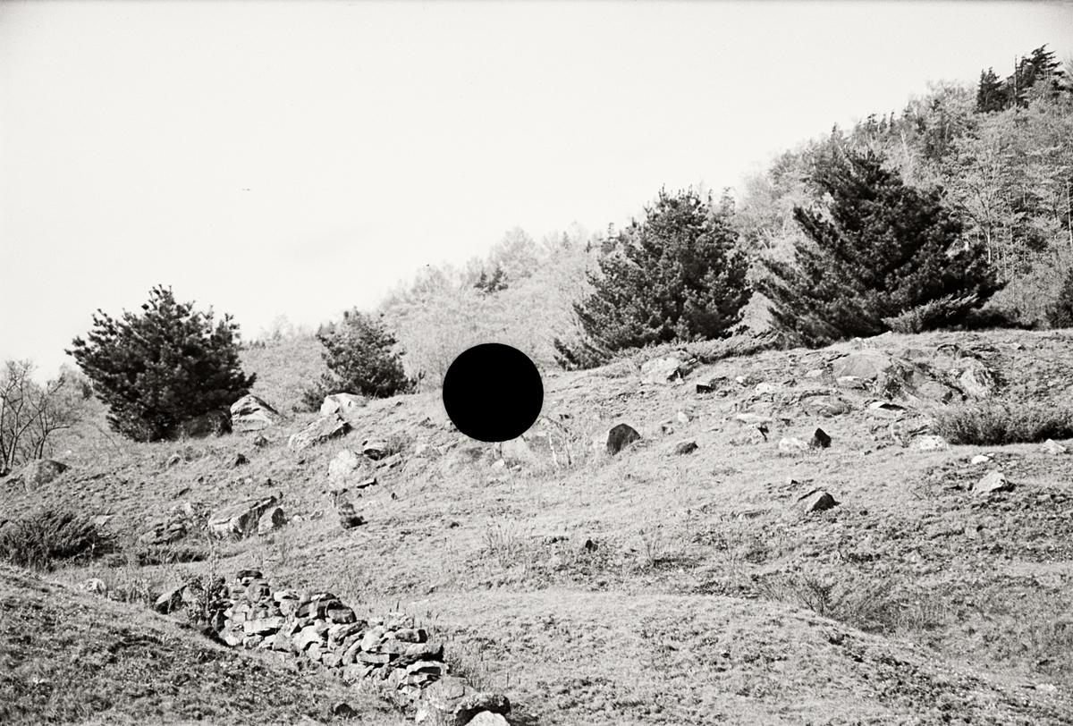 21. Untitled, Vermont. 1937. Arthur Rothstein. 8a08663.