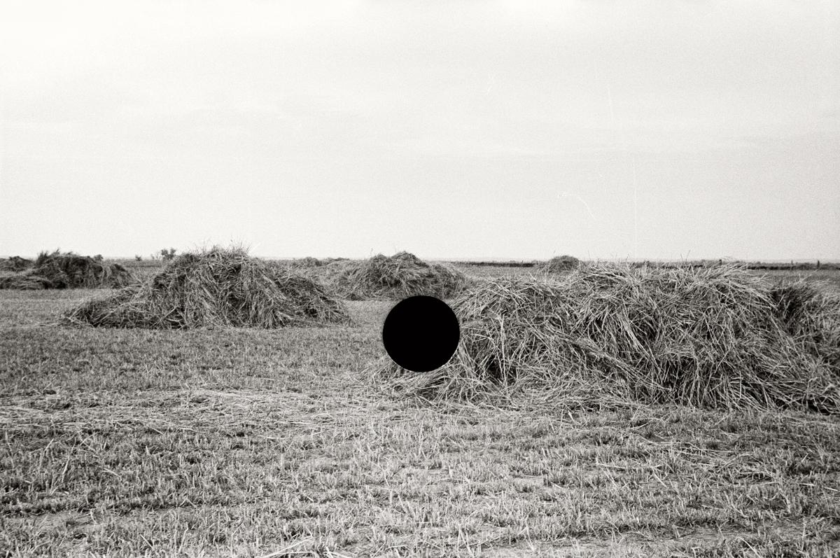 33. Untitled. Nebraska. 1938. John Vachon. 8a03985.