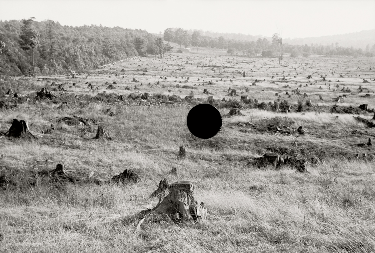 34. Cut-over, Garrett County, Maryland. 1935. Theodor Jung. 8a13918.