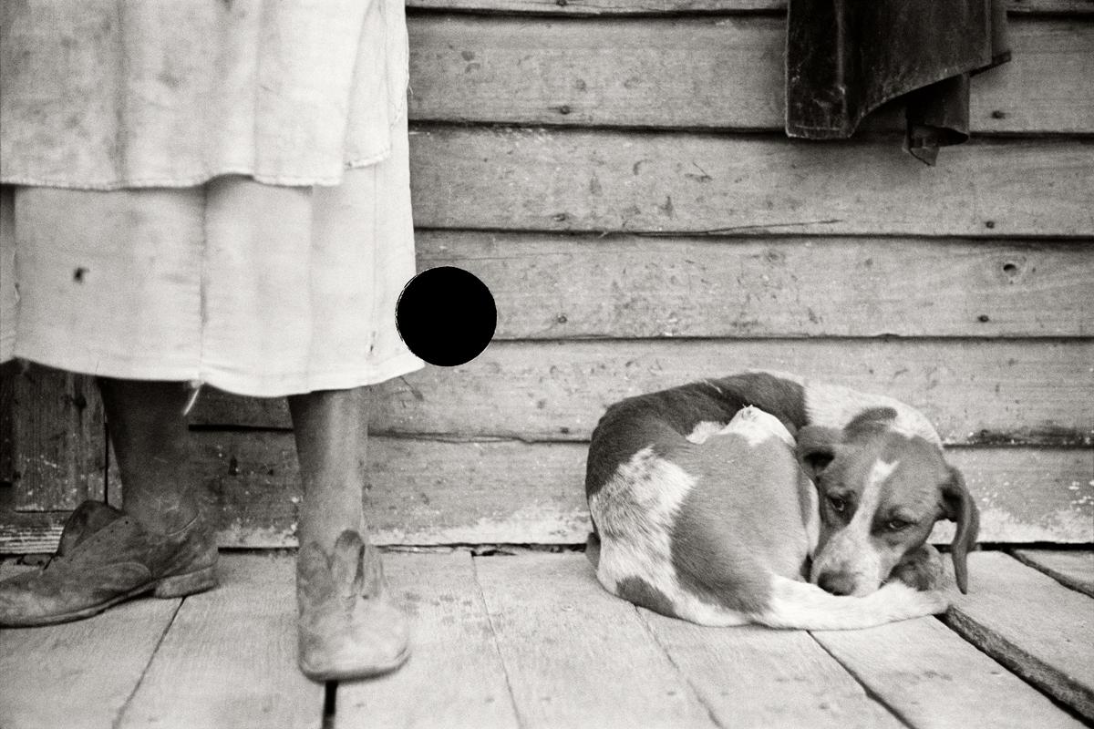 58. Sharecropper and dog. North Carolina. 1938. John Vachon. 8a03148.